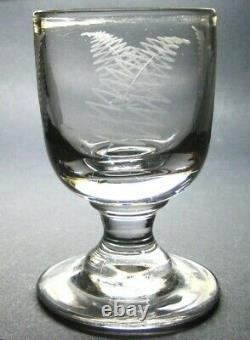 Antique Georgian Hand Blown Etched Fern Large Heavy Rummer Drinking Glass