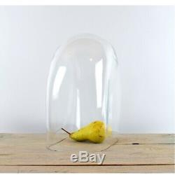 Handmade Mouth Blown Clear Oval Glass Display Cloche Bell Jar Dome 30 cm